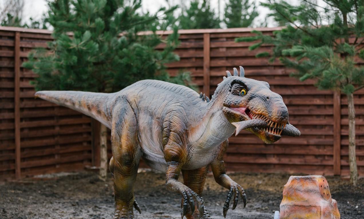 """Вінниця - Парк динозаврів""""DINO"""", Подільський Зоопарк, АвтоМотоВелоФотоТелеРадіо музей, фонтан ROSHEN"""